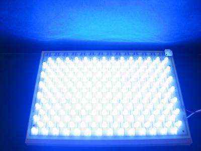 98/196個LED点灯セットの販売